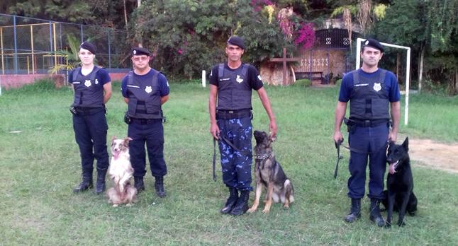 Animais são treinados para ajudar e proteger o patrulheiro